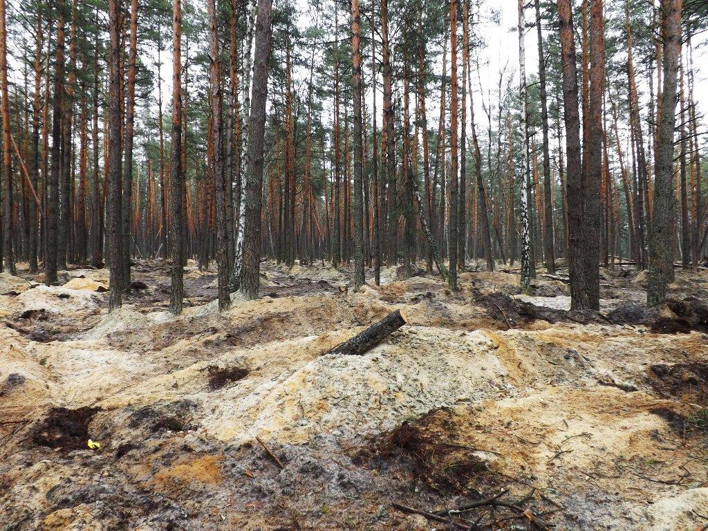 Депутати Рівненської облради не дали землю для  видобування бурштину